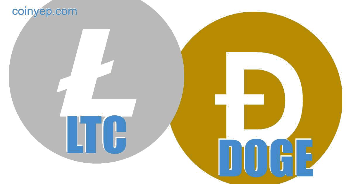 bitcoin litecoin dogecoin piniginė